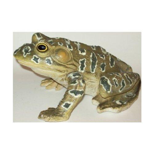 Phil Seltzer Grunting Rubber Bullfrog Amphibian Replica, 9
