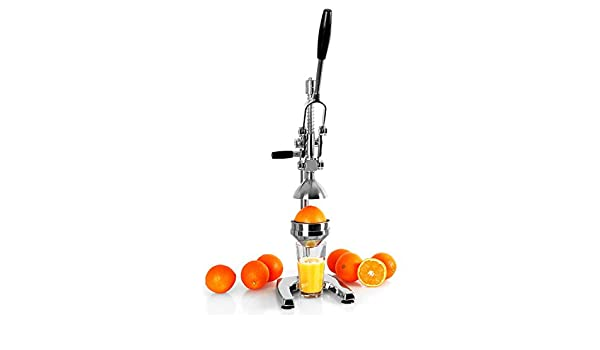 Compra OneConcept EcoJuicer XL - Prensa de frutas (palanca mecánica, para preparación de zumo de fruta fresca, sin corriente, estable, silencioso, ...