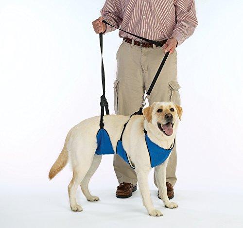 Guardian Gear Nylon Lift & Lead 4-In-1 Dog Harness - XXX-Large - Blue