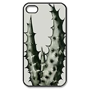 Cactus DIY For Apple Iphone 4/4S Case Cover LMc-77064 at LaiMc