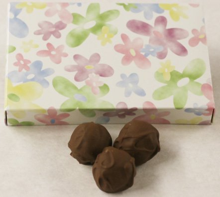 (Scott's Cakes Milk Chocolate Covered Key Lime Fruit Truffles in a 1 Pound Daisy Box)