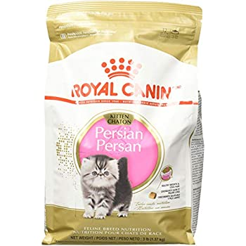 Royal Canin Feline Breed Nutrition Persian Kitten Dry Cat Food, 3 Lb