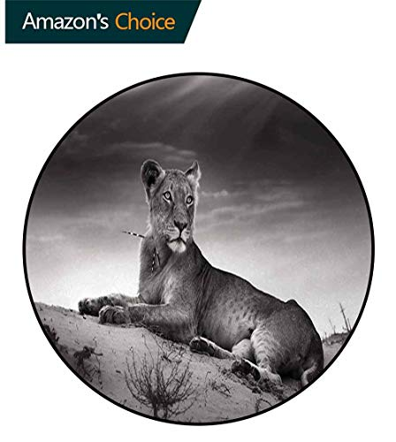 DESPKON-HOME Black and White Super Soft Circle Rugs for Girls,Wild Lioness On Desert Sand Dunes African Animal Safari Image Print Circular Area Rugs for Kids Bedroom Round-59 Inch,Black White Grey