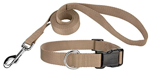 Country Brook Design | 3/8 Inch Deluxe Nylon Dog Collar & Leash - Copper Gold-XS