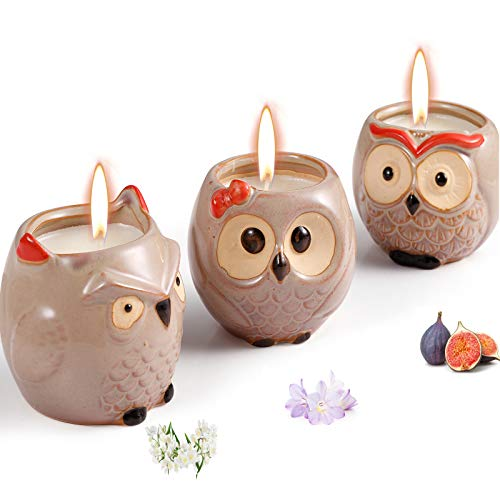 Scented Candles Sets Gifts for Women - 3 Pack Novelty Owl Natural Soy Candles for Home Scented, Aromatherapy Candles Bulk for Garden, Porch, Outdoor Patio Decor (English Pear & Fressia, Jasmine, Fig)
