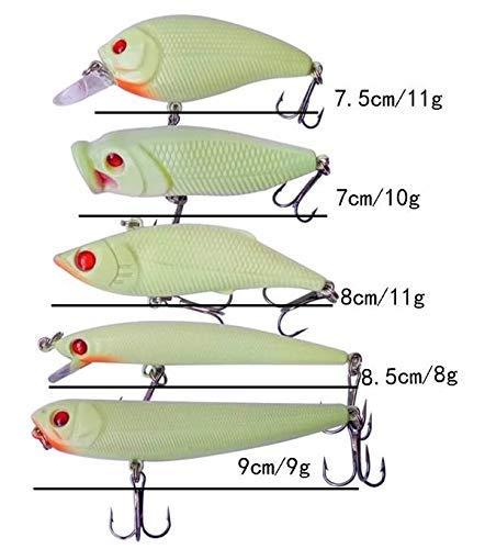 Fluoreszierende Kunstk/öder Barsch Hecht Zander Angeln 7,5-9cm Zite Fishing Leucht-Wobbler-Set 5-teilig in K/öder-Box