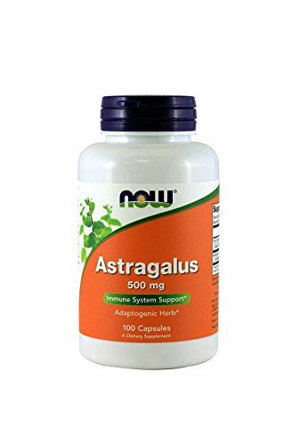 Now Astragalus 500mg, 100 Capsules (Pack of 4)