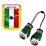 Flagline Mexico - Boxing Glove and Window Hanger Combo