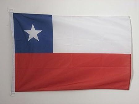 AZ FLAG Bandera Nautica de Chile 45x30cm - Pabellón de conveniencia CHILENA 30 x 45 cm Anillos: Amazon.es: Hogar