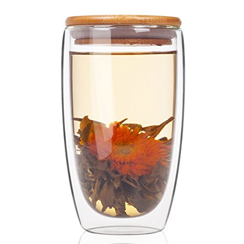 ELITEA Double Wall Glass Coffee Mug Tumbler with Lid (Large 15 oz.fl.)
