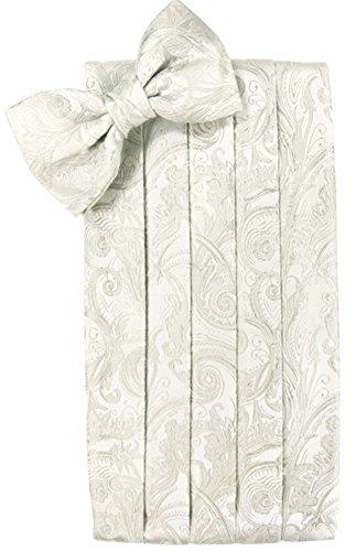 (Cardi Men's Tapestry Paisley Bowtie and Cummerbund Set, Ivory)