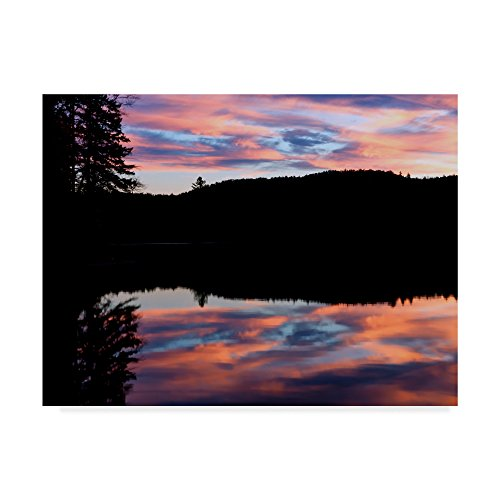 (Trademark Fine Art Anthony Paladino 'silhouetted Landscape Pink Clouds' Canvas Art)