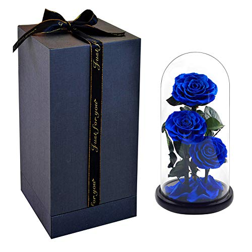 Pigting Beasts Rose in Glass Dome +Enchanted Rose Holder +Beauty and The Beasts Rose Kit + Large Ecological Rose Charm Petals Ornament