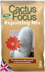 Cactus Focus Repotting Mix 2 Litre Bag