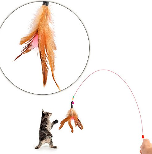 Kitten Pet cat toy Cute Design Steel Wire Feather Teaser Wand Plastic Toy for cats Color Multi Products For pet ( random color ) (Paris Zapatos)
