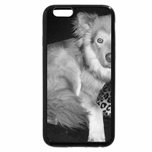 iPhone 6S Plus Case, iPhone 6 Plus Case (Black & White) - Coyote dog hybrid