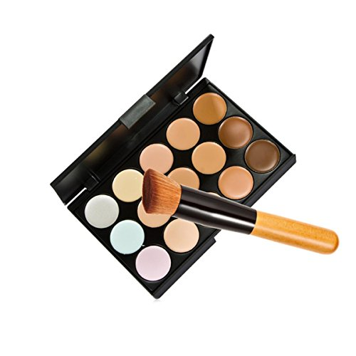 Price comparison product image 15 Colors Makeup Concealer Foundation Cream Cosmetic Palette Set Tools With Brush