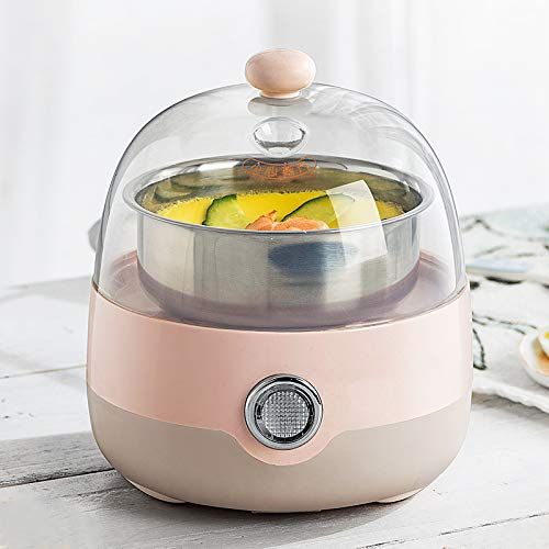 FAY Electric Egg Cooker and Poacher,Egg Cooker Automatic Power Off Steamer Single-Layer Mini Stainless Steel Boiled Egg Breakfast Machine
