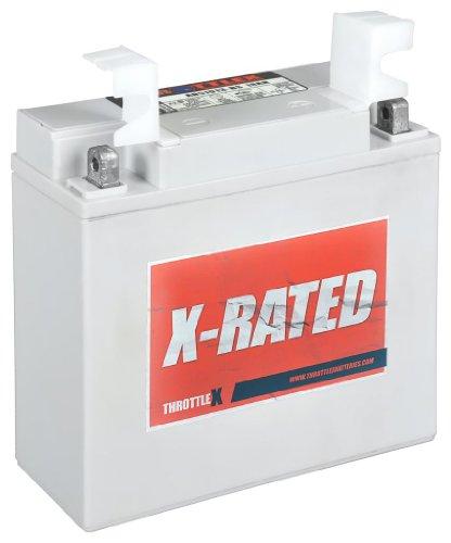 ThrottleX Batteries - AD51913-BS - AGM Replacement Power Sport Battery