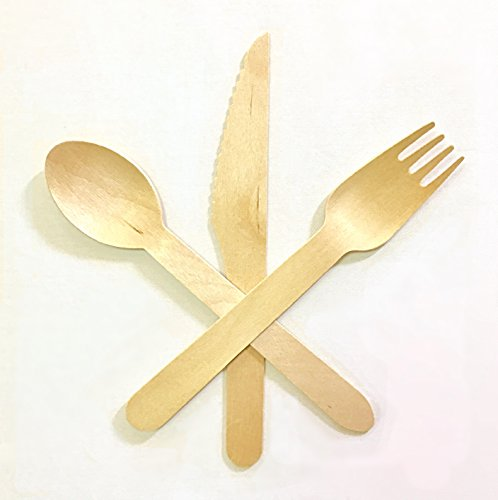 Disposable Wooden Cutlery Set | Eco Friendly, Biodegradable, Sustainable Utensils | Outdoor Dinnerware/Flatware Party Supplies | 6