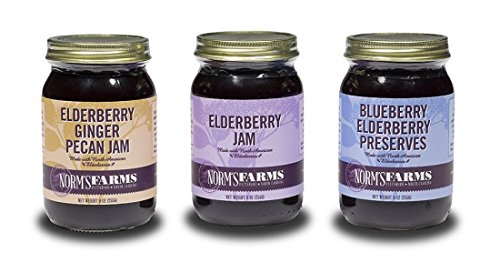 - Norm's Farms Elderberry Jam Pack, Delicious and Flavor Packed, 9 Ounce Jar, Pack of 3