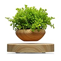 Homework Magnetic Suspended Flower Pot Wood Grain Round LED Levitating Indoor Air Plant Pot No Plant US Plug