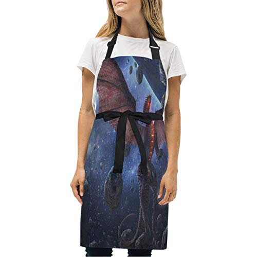 EAVNLinism Dragons Stones Meteorite Print Apron with Pockets, Unisex Kitchen Bib Apron with Adjustable Neck for Cooking Baking Gardening BBQ Party Commercial Craft