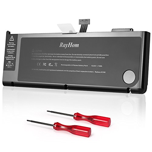 RayHom Battery Battery 12Months Warranty Li Polymer