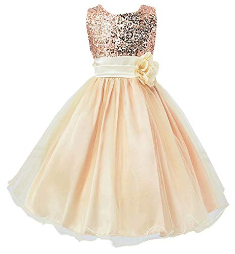 Girls Dress, Wedding Gown Bridesmaid Princess Tulle Sequined Sleeveless Party Dress for Toddlers Little & Big Girls, 1# Champagne, US 4-5 Years = Tag 120