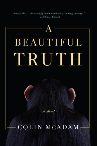"""A Beautiful Truth"" av Colin McAdam"