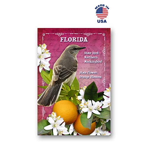 FLORIDA BIRD AND FLOWER postcard set of 20 identical postcards. FL state symbols post cards. Made in USA.