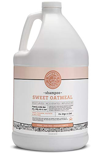 Dog Shampoo For Dry Itchy Skin - Smelly Dogs Cats Oatmeal Shampoo and Conditioner Medicated Formula Clinical Aloe Vera Pet Wash for Puppy Kitten Kitty Cat Dry Itchy Sensitive Shedding Skins - 1 Gallon