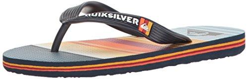 Quiksilver Molokai Everyday Stripe Youth