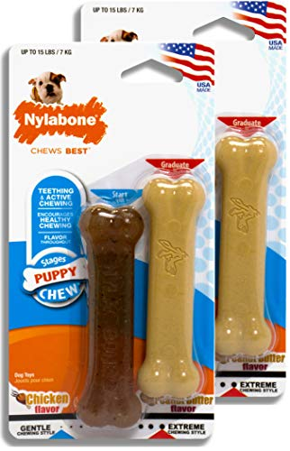 Nylabone Just For Puppies Peanut Butter and Chicken Flavored bone Puppy Dog Chew Toy, Twin Pack (design may vary)