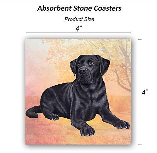 Labrador (Black Laying) Tabletop Drink Coaster (1)