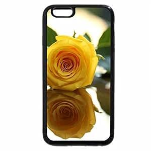 iPhone 6S / iPhone 6 Case (Black) A Rose
