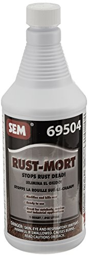 Auto Body Rust Treatment - 8