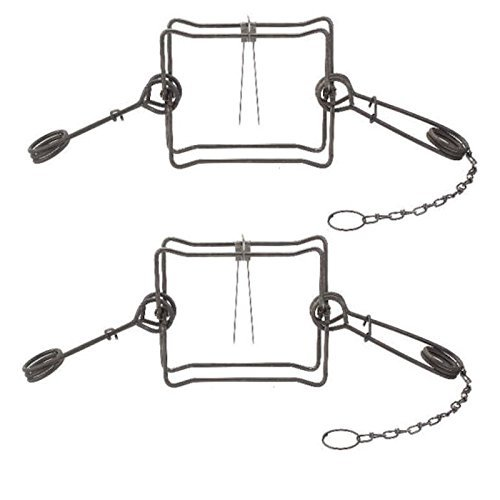 2 Pack Duke #330 BT Body Trap 10