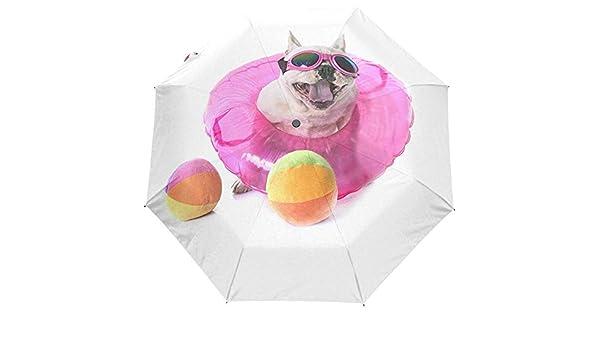 Bulldog francés Pelota de Tenis Abrir Cerrar Paraguas Plegable de ...