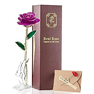 24K Gold Rose Long Stem Real Fresh Rose Dipped Plated Never Fade Best Romantic Gift for Valentine's Day, Mother's Day,Anniversaries and Any Love Moments of Life. 117