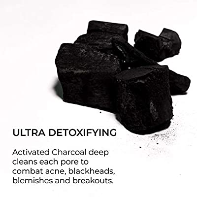 Charcoal Soap + Dry Brush Set