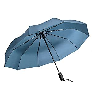 Windproof Umbrella, Vanwalk Black Portable Compact Travel Folding Strong Umbrella 10-Rib Sturdy with 210t Fabric Teflon, Auto Open and Close (Blue)
