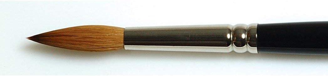 Pincel de pelo de Marta Kolinsky Winsor /& Newton Series 7 tama/ño 0