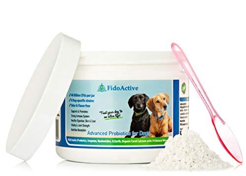 FidoActive Advanced Probiotics Prebiotic Digestion