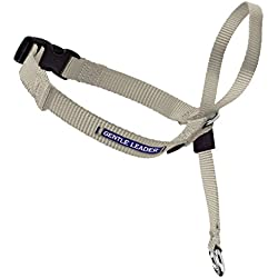 PetSafe Gentle Leader Head Collar with Training DVD, LARGE 60-130 LBS., FAWN