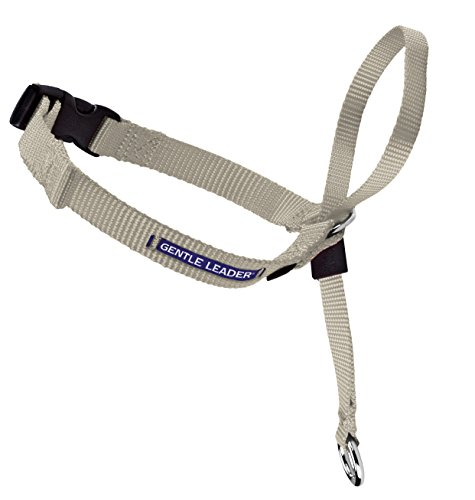 PetSafe Gentle Leader Head Collar with Training DVD, LARGE 60-130 LBS., (Large Fawn)