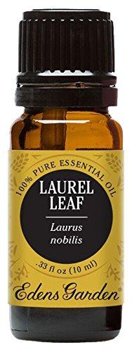 Laurel Leaf 100% Pure Therapeutic Grade Essential Oil by Edens Garden- 10 ml