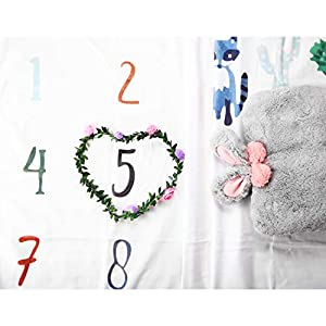 Baby Monthly Milestone Blanket Photo for Boys & Girls, 100% Soft Polyester Material Plus Gift Bouquet of Flowers Frame