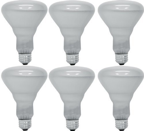 GE Lighting 24705 65-Watt 470/360-Lumen BR30 Commercial Indoor Reflector Floodlight Bulb, Assent White, 6-Pack