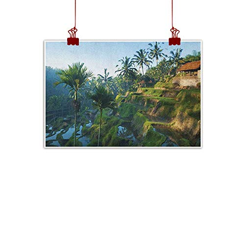 Home Wall Decorations Art Decor Balinese,Terrace Rice Fields Palm Trees Traditional Farmhouse Morning Sunrise Bali Indonesia, Green 28